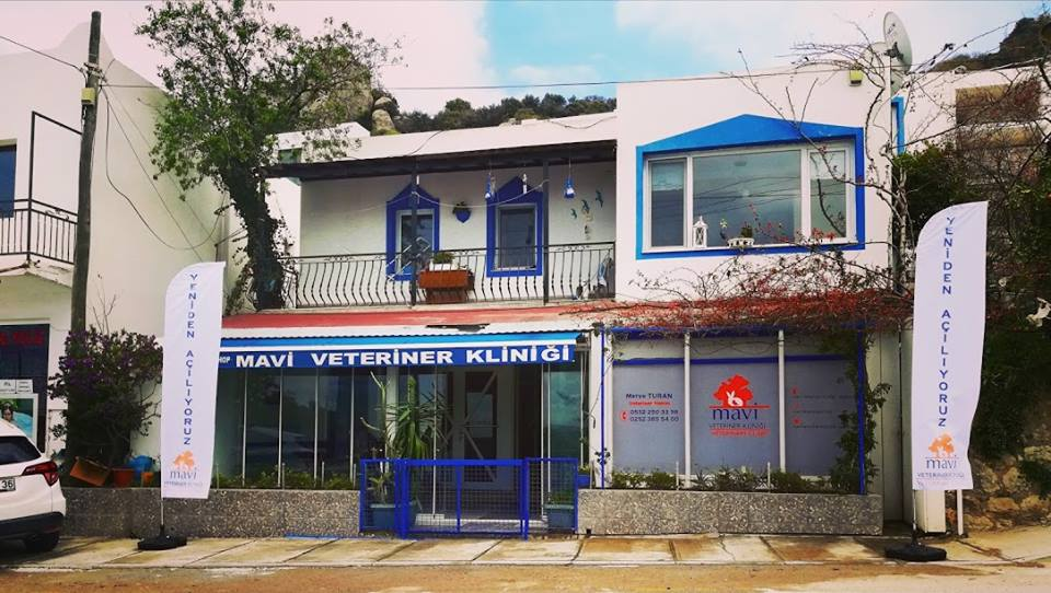 Mavi Veteriner Kliniği