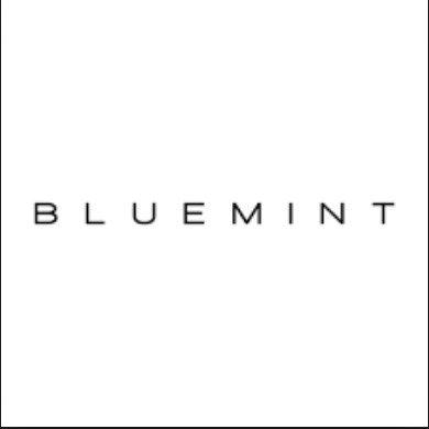 Bluemint Bodrum